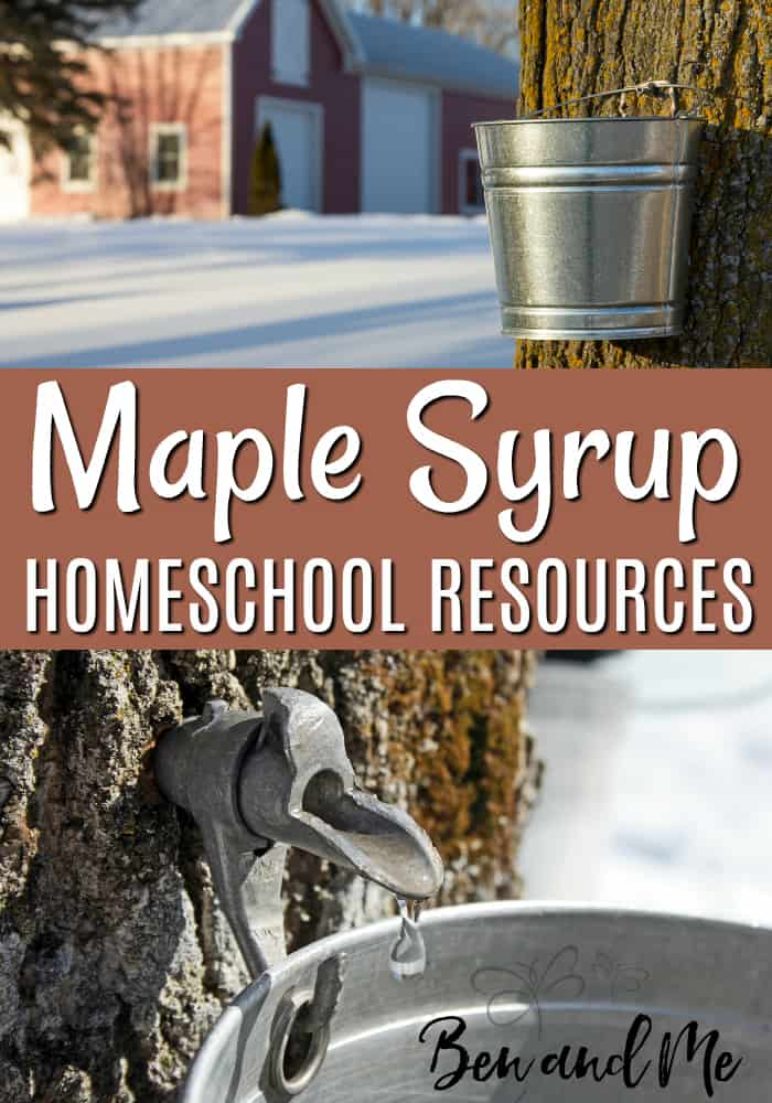 Learn about the history of maple syrup and how its made via books, videos, and unit studies. This is a delicious topic to study for children of all ages!  #maplesyrup #homeschool #unitstudies
