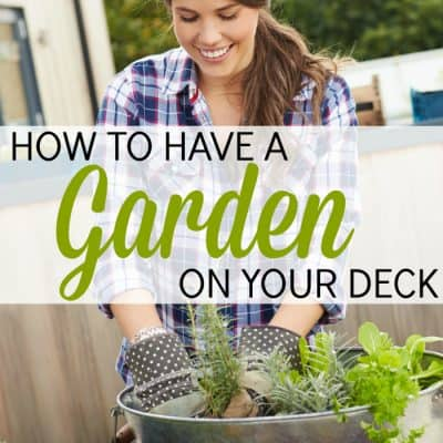 How to Have a Garden on Your Deck