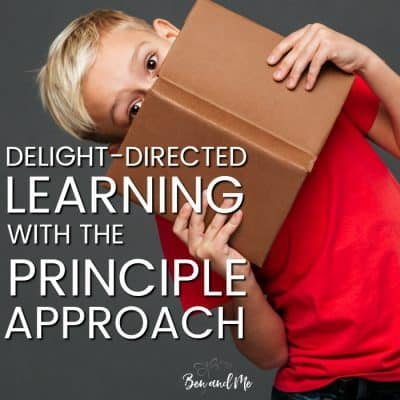 Delight-Directed Learning with the Principle Approach