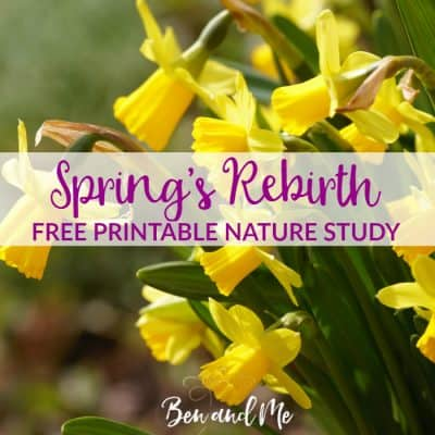 Spring's Rebirth  (free nature study printable)
