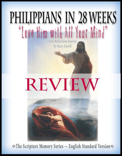 P28-ESV-Review