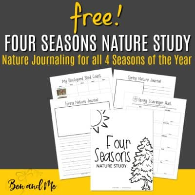 Why Study Nature? (FREE nature study printable for all seasons)