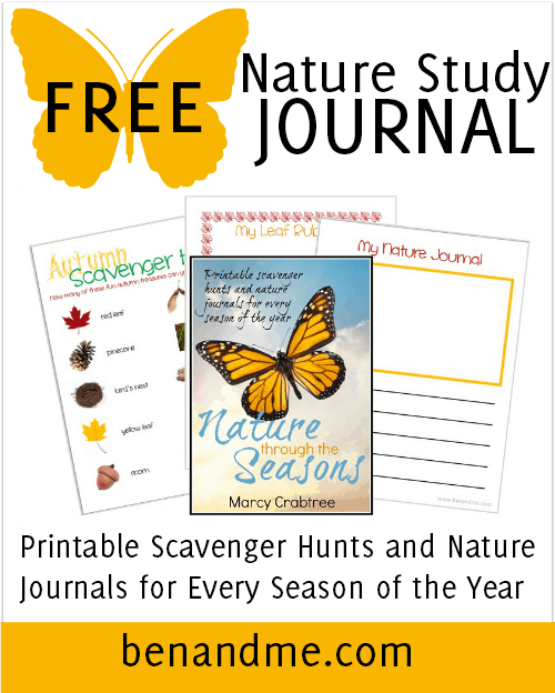 Free Nature Study Journal -- Free Nature Study printable: Inside you'll find a scavenger hunt, nature journaling pages, and nature activity pages for all 4 seasons, a total of 20 pages. I hope you and your kids enjoy exploring God's glorious creation and recording your finds with this printable.