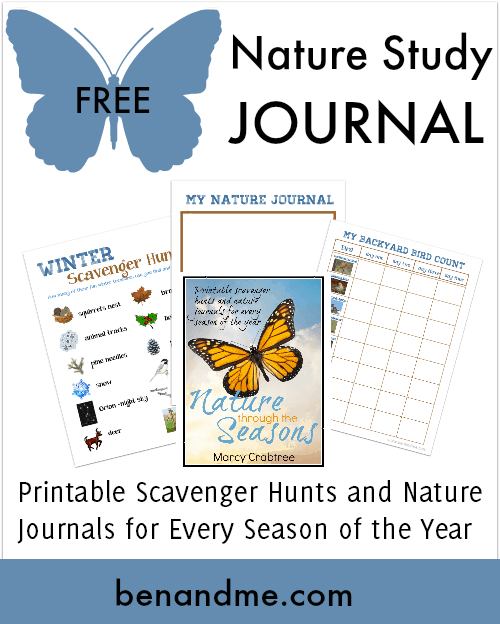 Free Nature Study Journal Winter