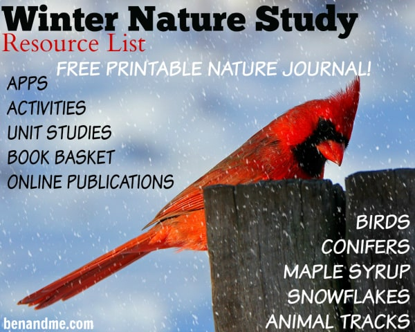 Winter Nature Study Resource List {with FREE Nature Journal}