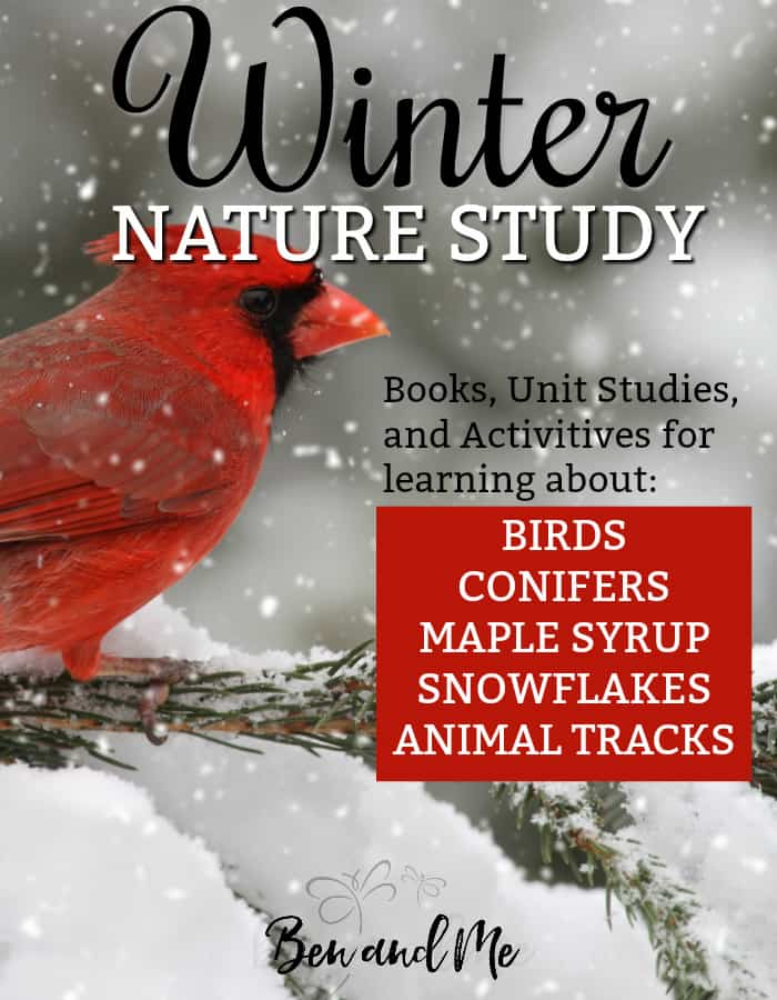 The following list of books, apps, activities, and unit studies can be used as a Winter Nature unit study, an addition to your current science curriculum, or just for ideas for fun nature walks. Choose a different focus once a week, go to the library and gather books, make it as hands-on as you can. Have fun!