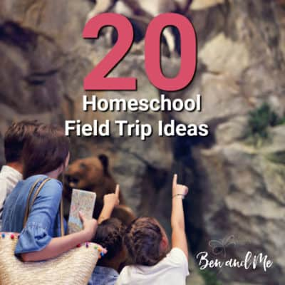 20 Homeschool Field Trip Ideas