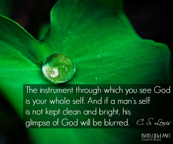 #CSLewis The instrument through which you see God is your whole self. And if a man's self is not kept clean and bright, his glimpse of God will be blurred.