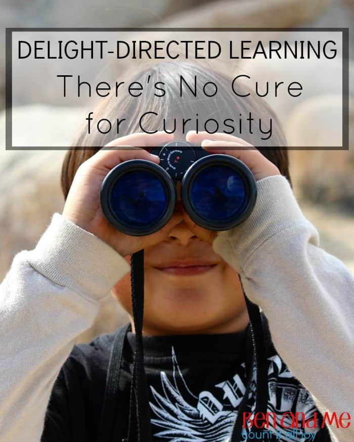 Delight-directed Learning: There's No Cure for Curiosity