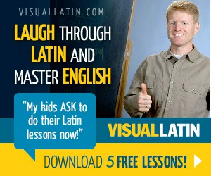 Visual Latin curriculum review