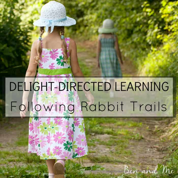 Delight-directed Learning: Following Rabbit Trails