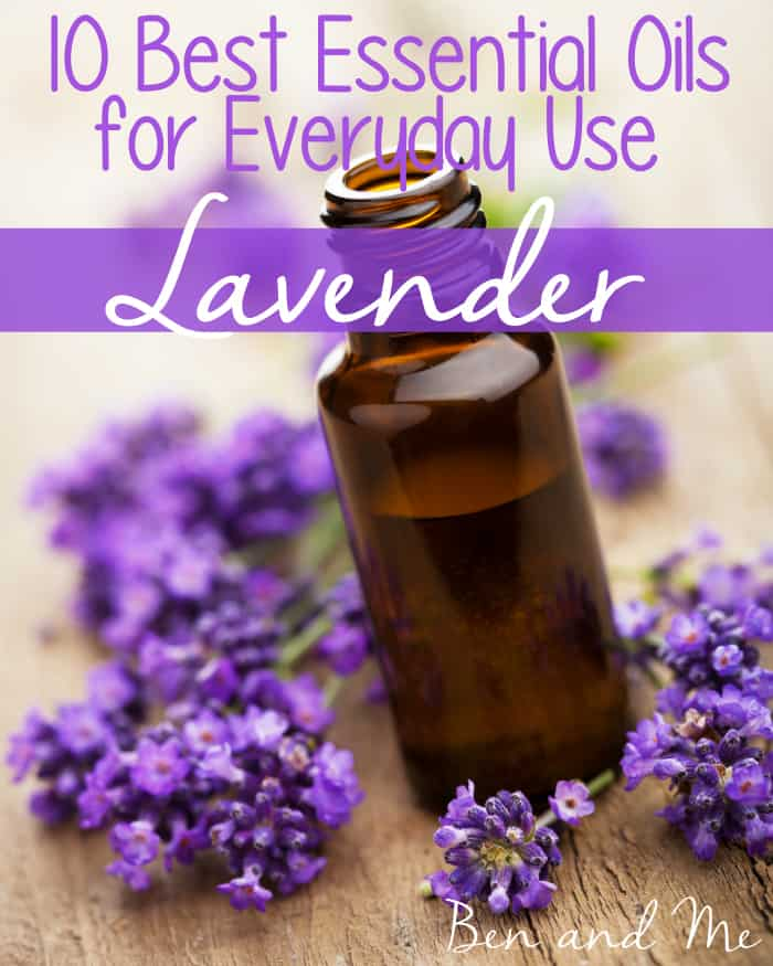 Everyday Uses for Lavender Essential Oil and Magnesium Oil ...