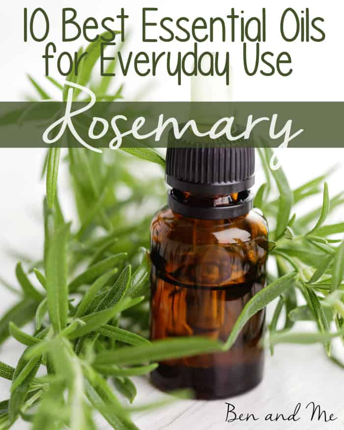 Best Essential Oils for Everyday Use -- Rosemary Essential Oil