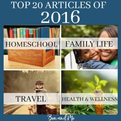 Top 20 Articles for 2016 (Homeschooling, Parenting, Travel, and Health & Wellness)