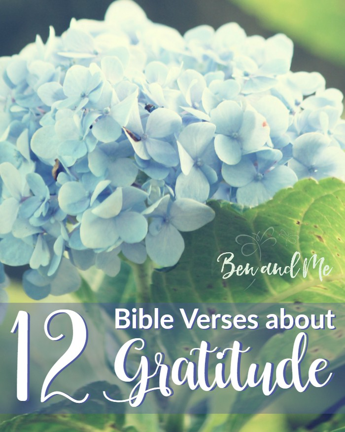 Cultivate a grateful heart while hiding God's Word in your heart with these 12 Bible Verses about Gratitude!
