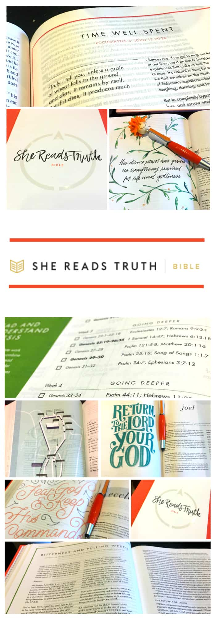 """To share how much I love this Bible, I have to start with the beauty. The claim of She Reads Truth is that it displays the """"beauty, goodness, and truth of Scripture"""". That it does. I think my favorite part is the stunning illustrations of Scripture meant to draw the eye to key verses."""