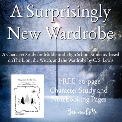 A Surprisingly New Wardrobe (a character study based on The Lion, the Witch, and the Wardrobe by C. S. Lewis)