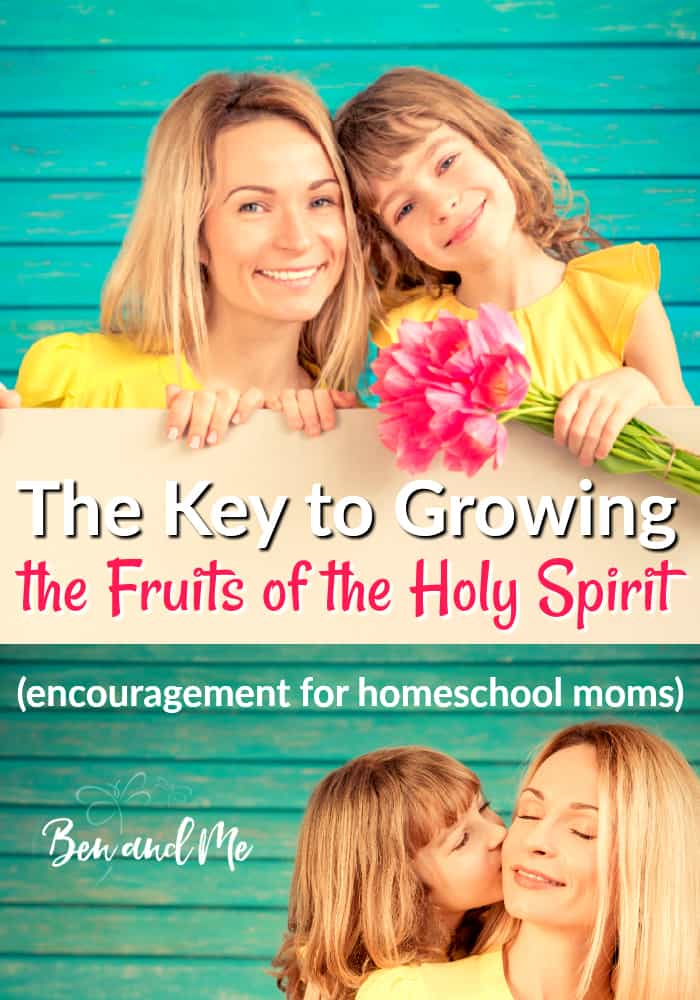 Dear homeschool mom, let me encourage you in your parenting with a brief illustration of hope, found in growing the fruits of the Holy Spirit. #homeschool #hsmommas #parenting #ChristianParents #fruitsofthespirit #fruitsoftheholyspirit