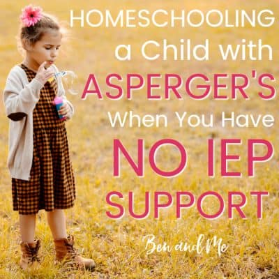 Homeschooling a Child with Asperger's When You Have No IEP Support
