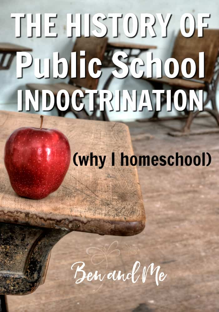 I have discovered just how insidious the school system really is and it makes me ever so glad we made the choice to homeschool rather than allowing public school indoctrination to filter into the minds of our children. #homeschooling #homeschool #whyhomeschool #publicschool #publicschoolindoctrination