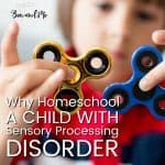 Why Homeschool a Child with Sensory Processing Disorder