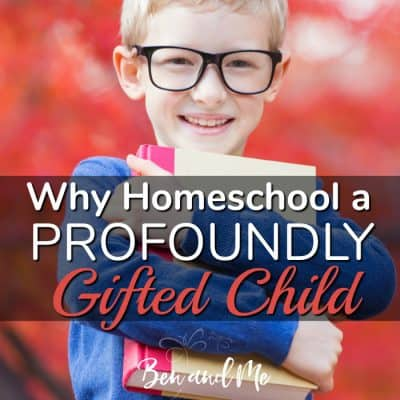 Why Homeschool a Profoundly Gifted Child