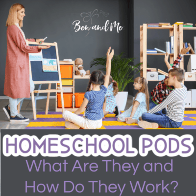 Homeschool Pods: What Are They and How Do They Work?