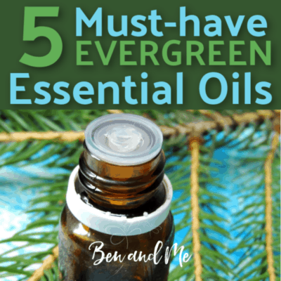 Top 5 Must-have Evergreen Essential Oils
