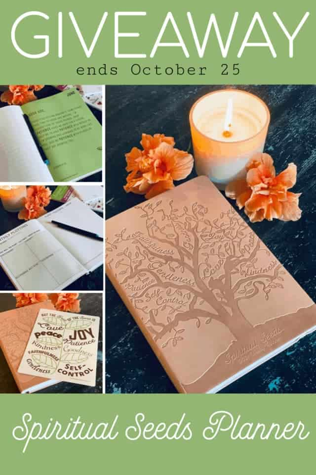 Would you like to win a copy of the 2021 Spiritual Seeds Planner? Enter to win your own copy by October 25! #spiritualseedsplanner #spreadtheseeds #weeklyplanner #faithplanner #ledbythespirit