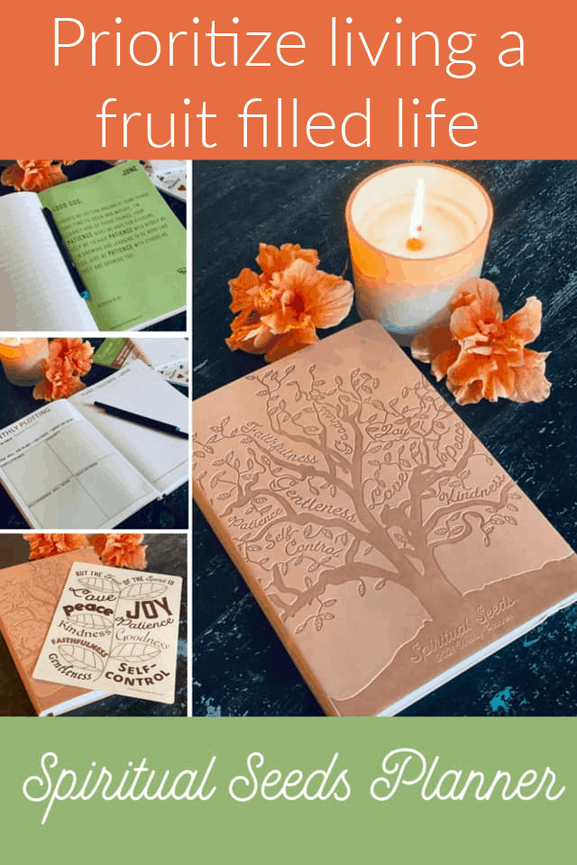 The Spiritual Seeds Planner is a planning tool designed to help Christians prioritize living a fruit filled life, guided by the Holy Spirit. #fruitofthespirit #spiritualplanner #plannersforChristianwomen #giftsforher #giftsforChristianwomen